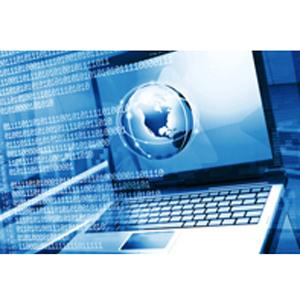 investigacion-datos-online